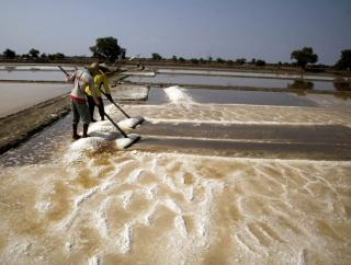Ganjar: Petani Garam Cilacap Butuh Investor