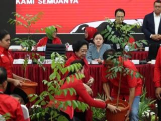 Megawati Beri Bibit Pohon untuk Cakada