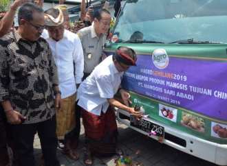 Keren, Buah Manggis Asal Bali Jadi Primadona Tiongkok