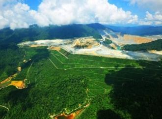 Pemerintah Reklamasi Tambang Lebih 7.000 Hektar di Tahun Ini