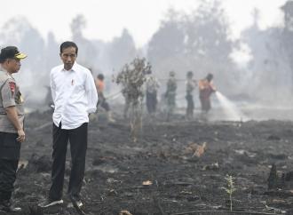 Penanganan Karhutla, Presiden Jokowi Tekankan Pencegahan