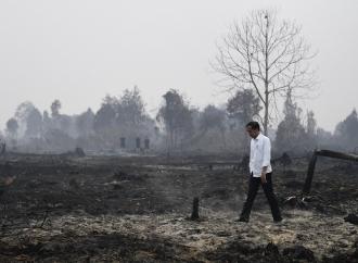 Penanganan Karhutla, Sugianto Segera Surati Presiden Jokowi