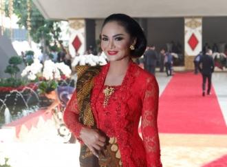Penusukan Wiranto, KD Nilai Pengamanan Kurang