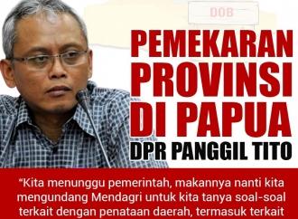 Pemekaran Provinsi di Papua, DPR Panggil Mendagri Tito