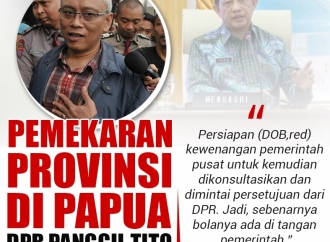 Soal Pemekaran Provinsi di Papua, DPR Panggil Mendagri Tito