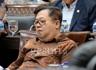 Darmadi Pastikan DPR Dukung Erick Benahi BUMN