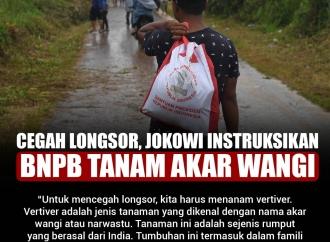 Cegah Longsor, Jokowi Instruksikan BNPB Tanam Akar Wangi