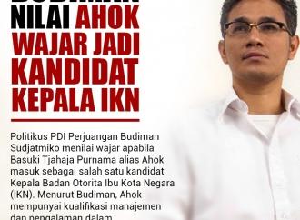 Budiman Nilai Ahok Wajar Jadi Kandidat Kepala IKN