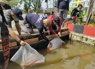 PDI Perjuangan Kalbar Sulap Selokan Jadi Pembudidayaan Ikan