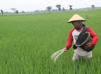 Empat Arahan Insentif Petani & Nelayan Saat Pandemi Covid
