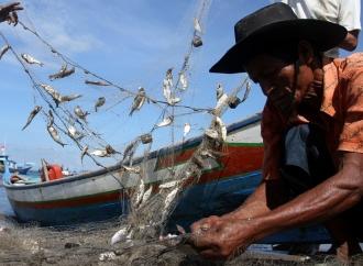 Ansy Desak KKP Lebih Berpihak Pada Nelayan Kecil