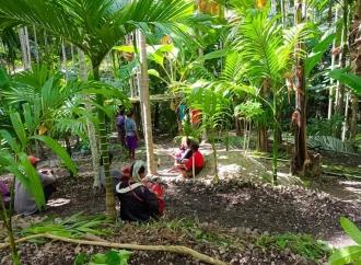 Ansy Lema Gandeng KLHK Bantu Kebun Rakyat Senilai Rp450 Juta