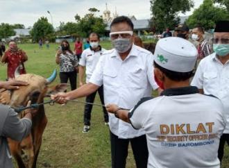 Hari Raya Idul Adha, Pemprov Sulut Salurkan 210 Ekor Sapi