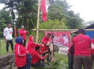 Banteng Simeulue Berkurban Sumbangan DPP PDI Perjuangan