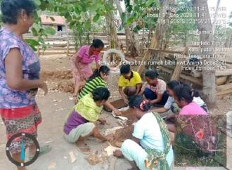 Sinergitas Ansy & Kementan Mengalir Untuk Wanita Tani