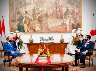 Presiden Hargai Kontribusi Jepang Dalam Penanganan COVID-19
