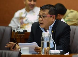 Sonny Puji Ipuk, Cocok Pimpin Banyuwangi