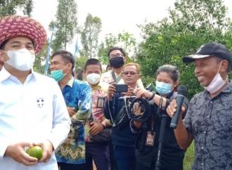 Rifqi Dukung Pembangunan Infrastruktur Desa di Kalsel