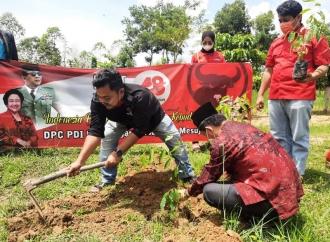 HUT Mega, Banteng Mesuji Tanam Pohon di Kehati-Tanjung Raya