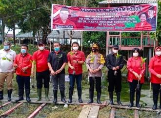 Hadiahi Megawati, Banteng Serdang Bedagai Tanam 500 Mangrove