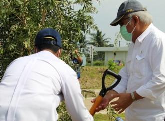 Basuki Tanam 6.600 Bibit Pohon di Tol Trans Sumatera
