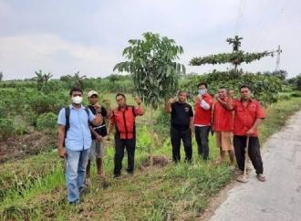 Jaga Kelestarian Lingkungan, Banteng Binjai Rawat Pohon