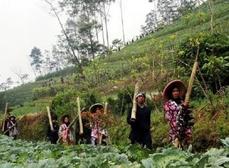 Mindo: Desa Kuat, Basis Pusat Pemulihan Ekonomi Nasional