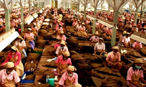 Hendrawan: Industri Tembakau Nasional Perlu Dibuatkan UU