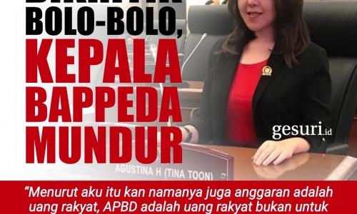 Dikritik Bolo-Bolo, Kepala Bappeda Mundur