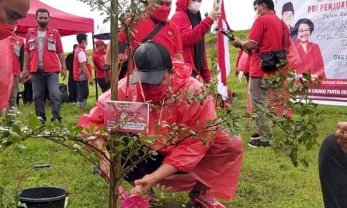 HUT Megawati, Banteng Makassar Tanam 2.800 Pohon
