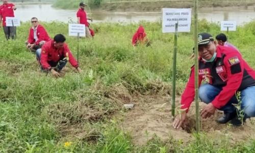 HUT Partai & Megawati, Banteng Konawe Tanam Seribu Pohon