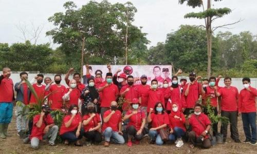HUT Megawati, Banteng Babel Tanam 1.000 Bibit Mangrove
