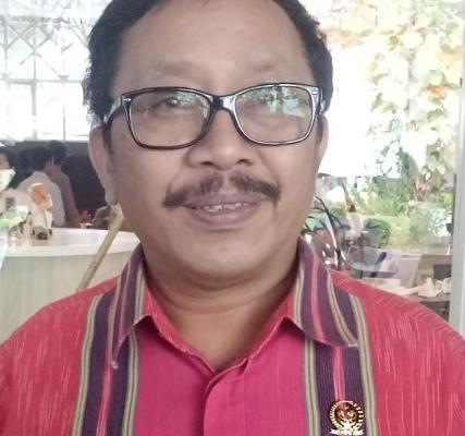 Endro Yakin Pembentukan Papua Selatan Terwujud di Era Jokowi