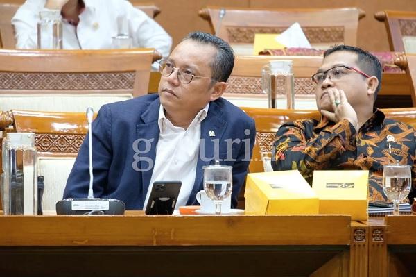 Deddy: Pidato Megawati Tak Bidik Orang Tertentu