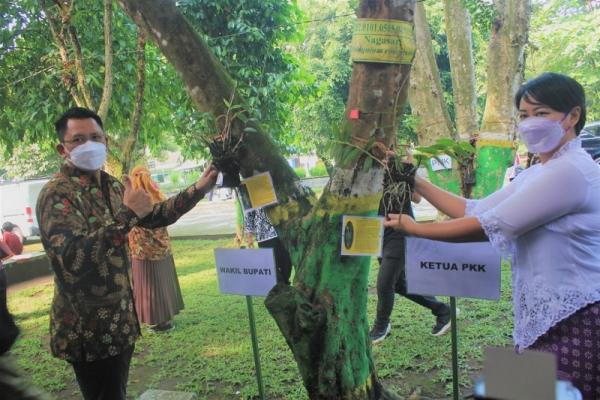 650 Anggrek Ditanam di Kantor Pemkab Sleman-Taman Denggung