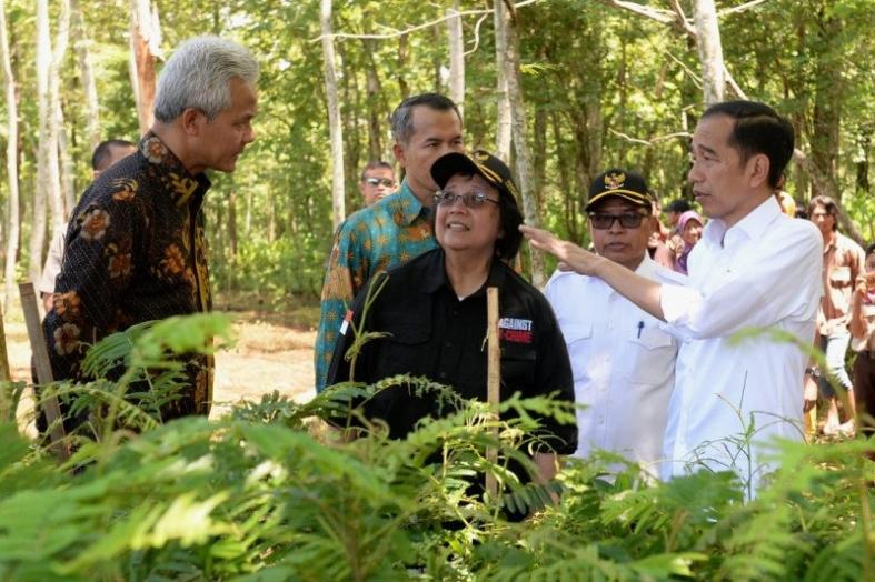 Presiden Jokowi Ingatkan Target Kurangi Emisi Gas Rumah Kaca