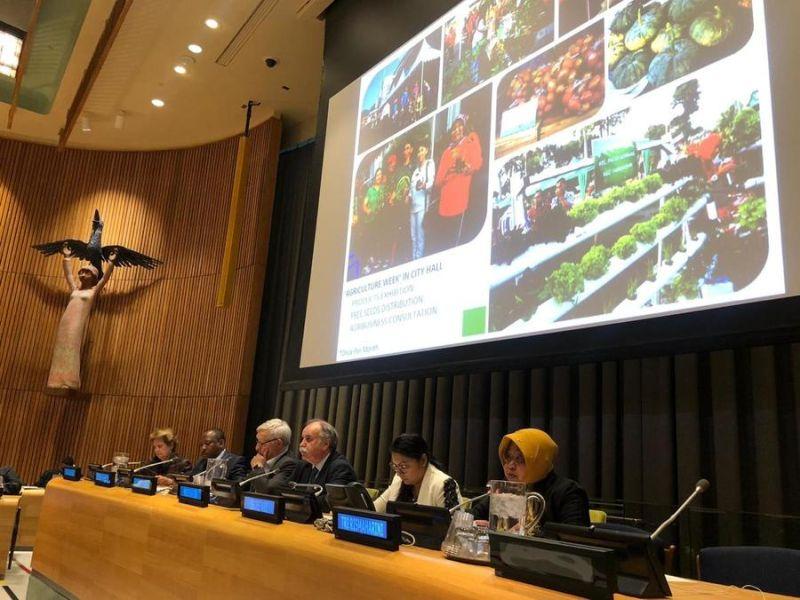 Risma Paparkan Materi Ketahanan Pangan di Markas PBB
