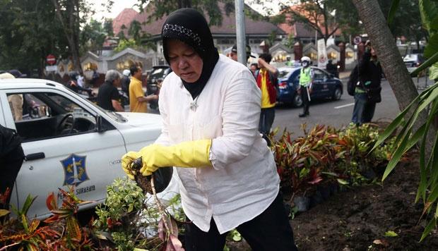 Keren, di Era Risma 30 % Wilayah Surabaya Dipenuhi Taman