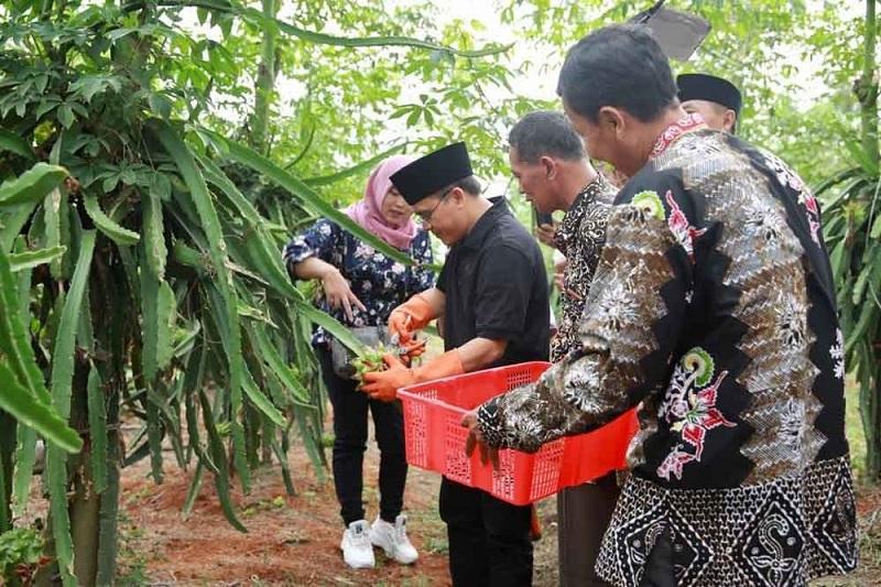 Petani Banyuwangi Didorong Gunakan Sistem Semi Organik