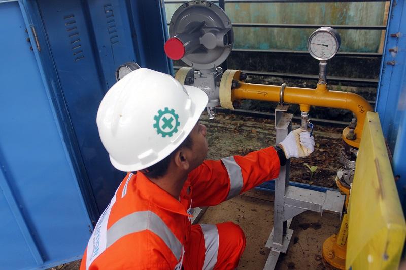 PGN Diminta Percepat Pengembangan Gasifikasi