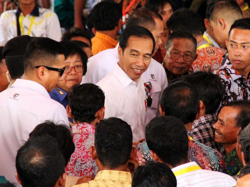 Terkait Hutan Adat, Karolin Ucapkan Terima Kasih ke Jokowi
