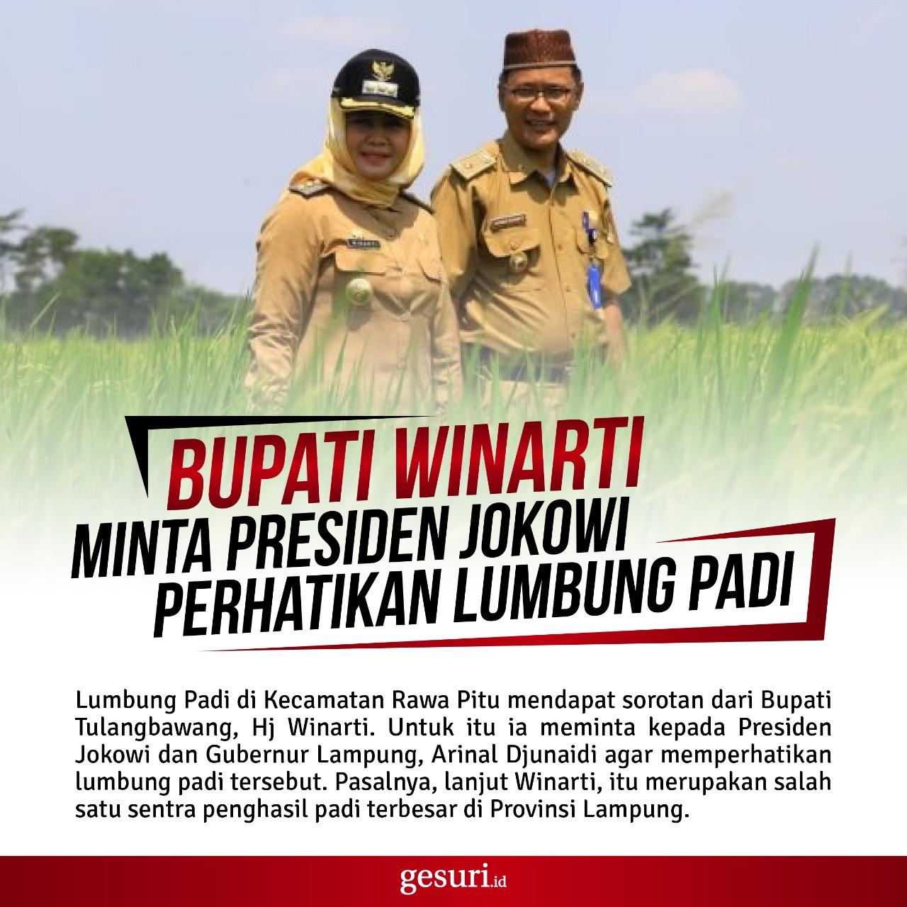 Bupati Winarti Minta Presiden Jokowi Perhatikan Lumbung Padi