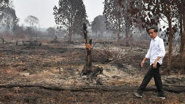 Bang Dhin Ajak DPRD & Masyarakat Kalsel Atasi Karhutla