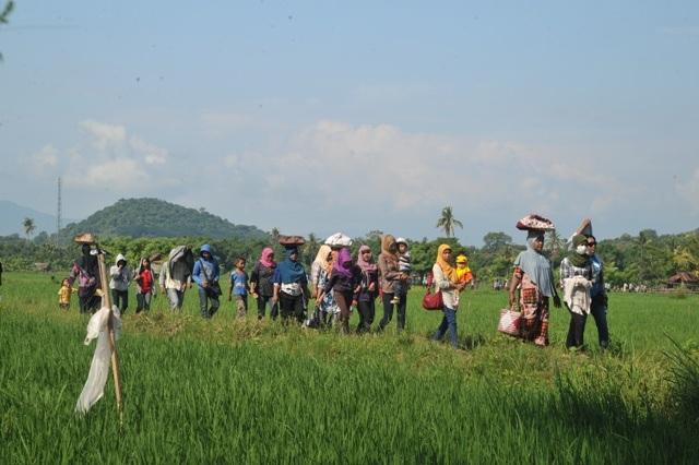 Desa Poto Kab. Sumbawa Bertahan di Tengah Badai Globalisasi