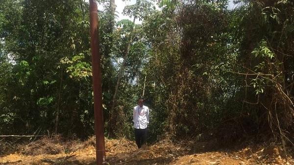 Jokowi Blusukan Lewat Jalan Darat di Lokasi Ibu Kota Baru