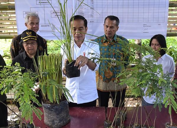 Presiden: Kita Harus Bersahabat Dengan Lingkungan dan Alam