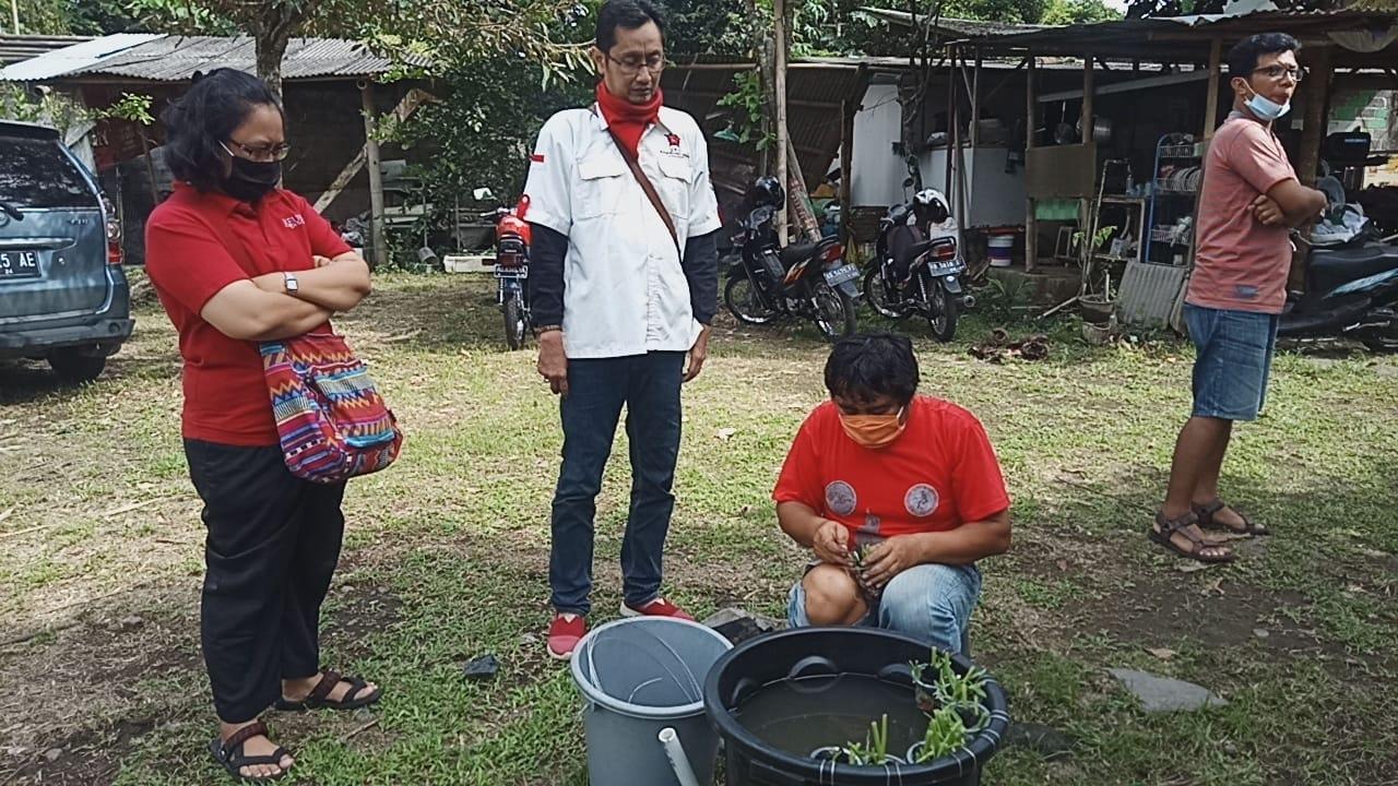 Repdem Yogyakarta Belajar Pelihara Lele dan Berkebun