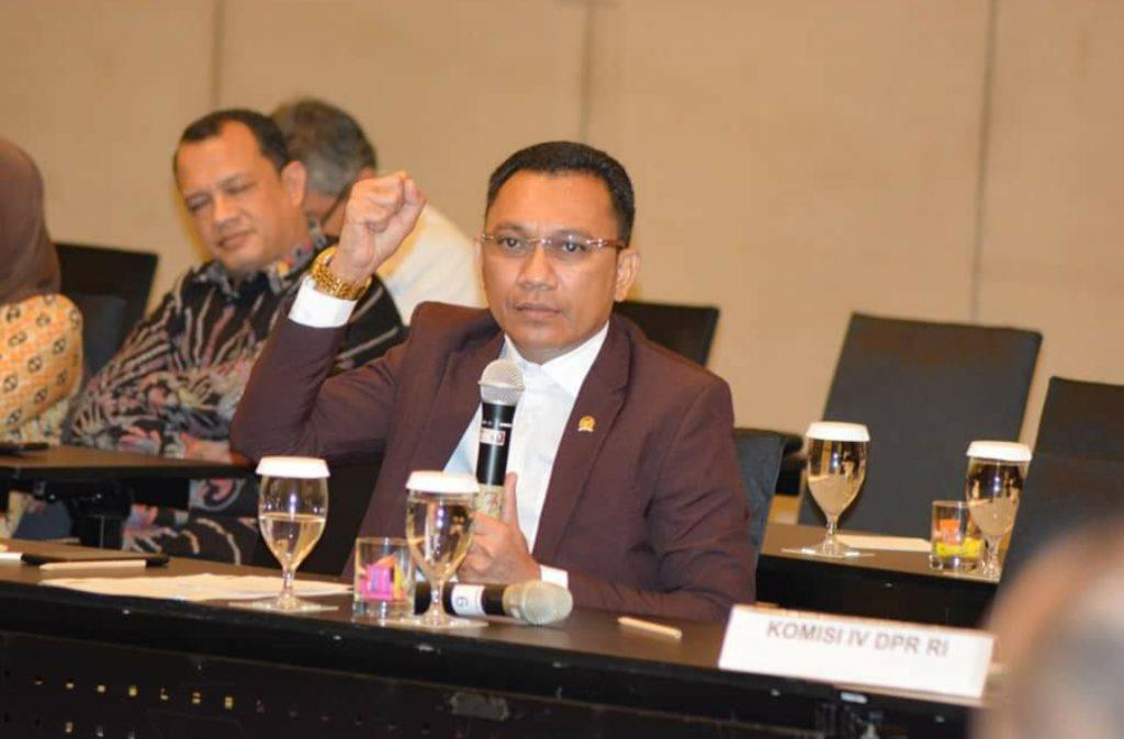 Ansy : NTT Kaya Ikan, Seharusnya Nelayan Sejahtera!