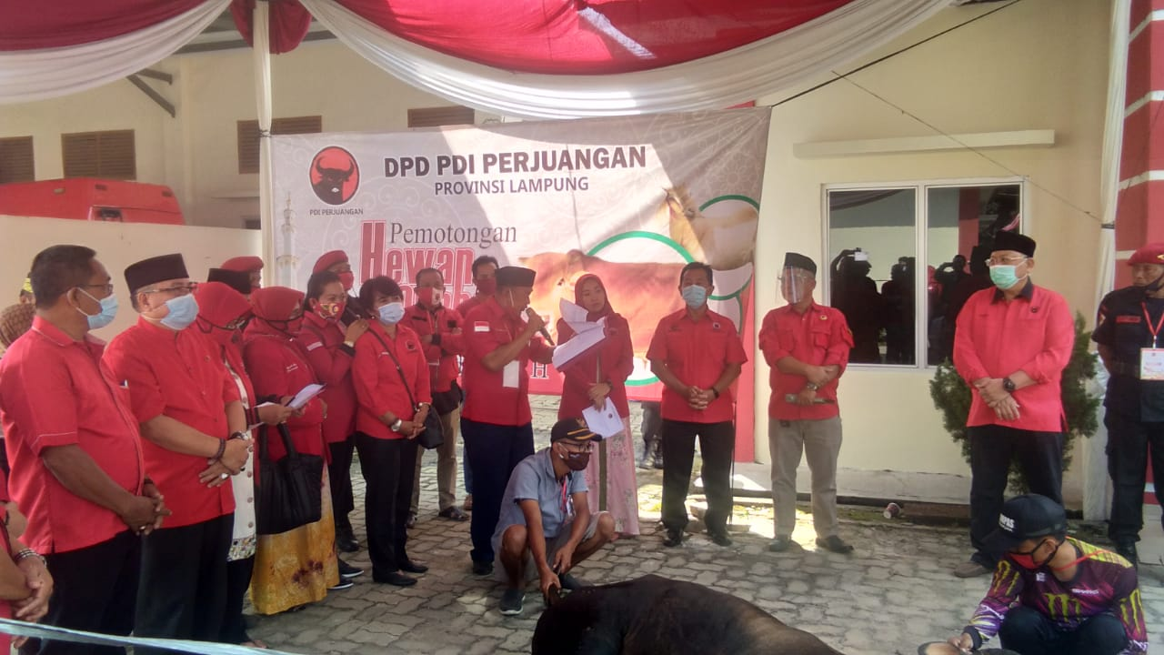 Hari Raya Idul Adha, Banteng Lampung Potong 13 Ekor Sapi