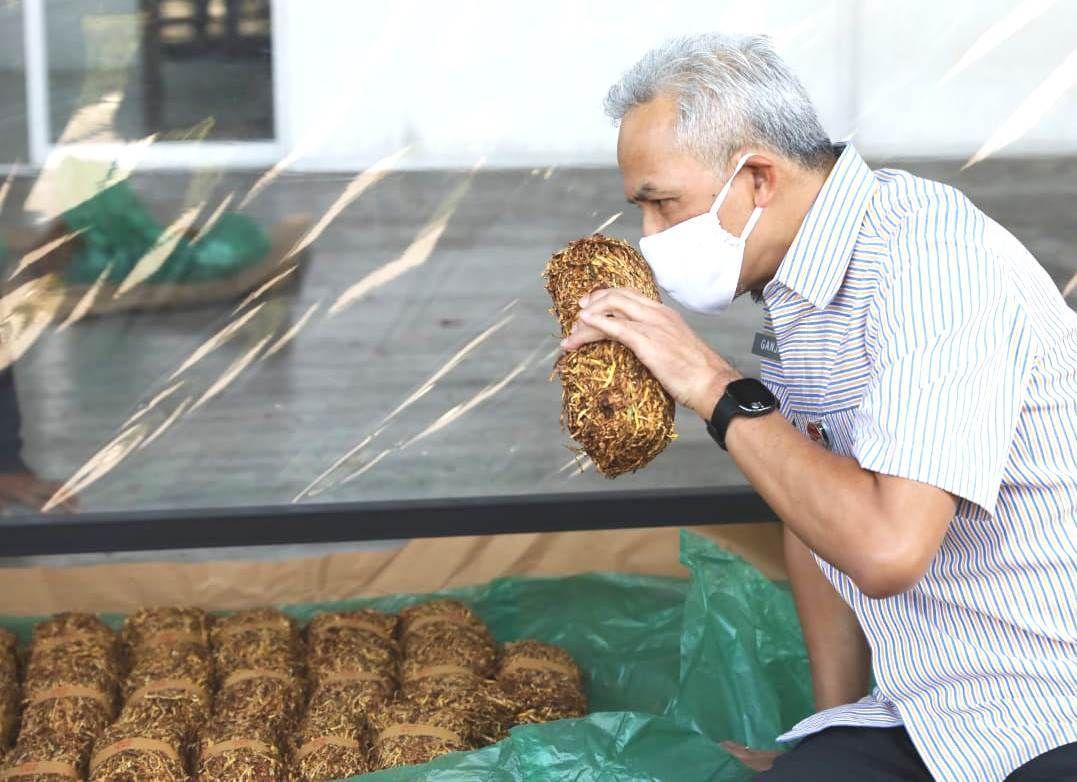 Ganjar Pastikan Perusahaan Rokok Tetap Beli Tembakau Petani